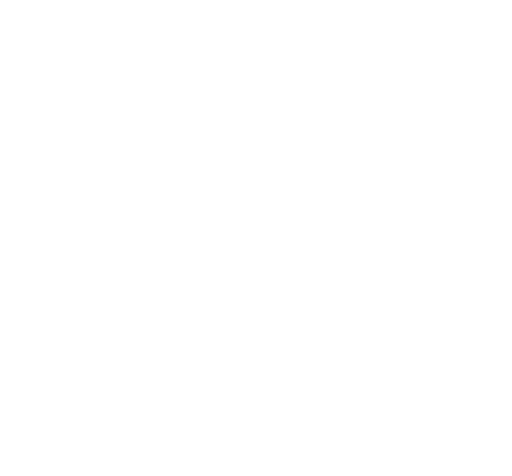 BlindRun